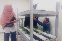 Mahasiswa FTP UGM Mengembangkan Sistem Monitoring Tumbuh-Kembang Tanaman Secara Presisi  (Precision Agriculture)