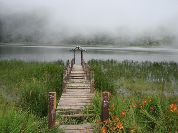 http://www.pecintaalam.net/gunung-argopuro/