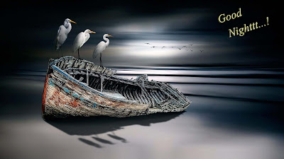 Crane-storke-birds-on-the-boat-at-night-HDcollection