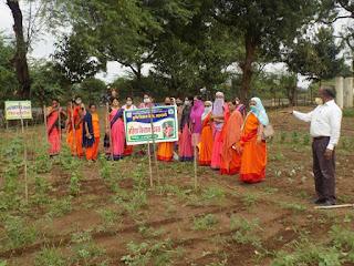 समन्वित खेती की तकनीक अपनाकर महिला दे सकती है खेती में अपना पूर्ण योगदान - डाॅ. बडोदिया!samanvit kheti ki takanik aapnakar mahila de sakati  h kheti me apna purn yogadan -dr.badodiya
