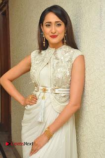 Actress Pragya Jaiswal Stills in Beautiful White Dress at turodu Audio Launch  0026.JPG
