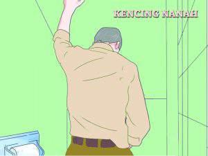 Obat kencing nanah pada laki laki