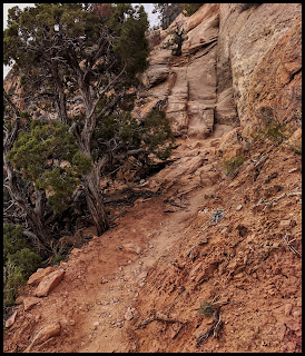 Do you see how the trail looks like it disappears?   That is because it is going straight up that rock!