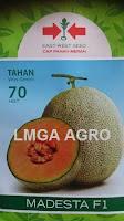 benih melon, benih tahan virus, madesta f1, benih panah merah