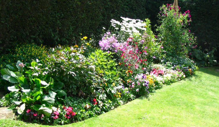 Backyard Design Basics: Edging Design Ideas: Basic Gardening Tips For Beginners