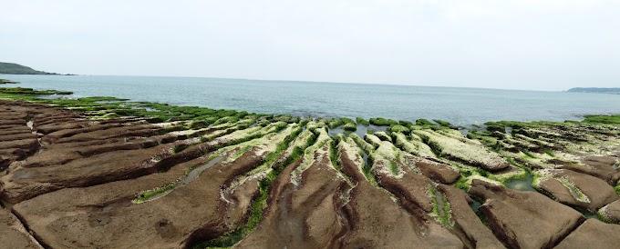 Taiwan,North Coast Shimen District | 2018 Laomei Greenstone ,Photo Record
