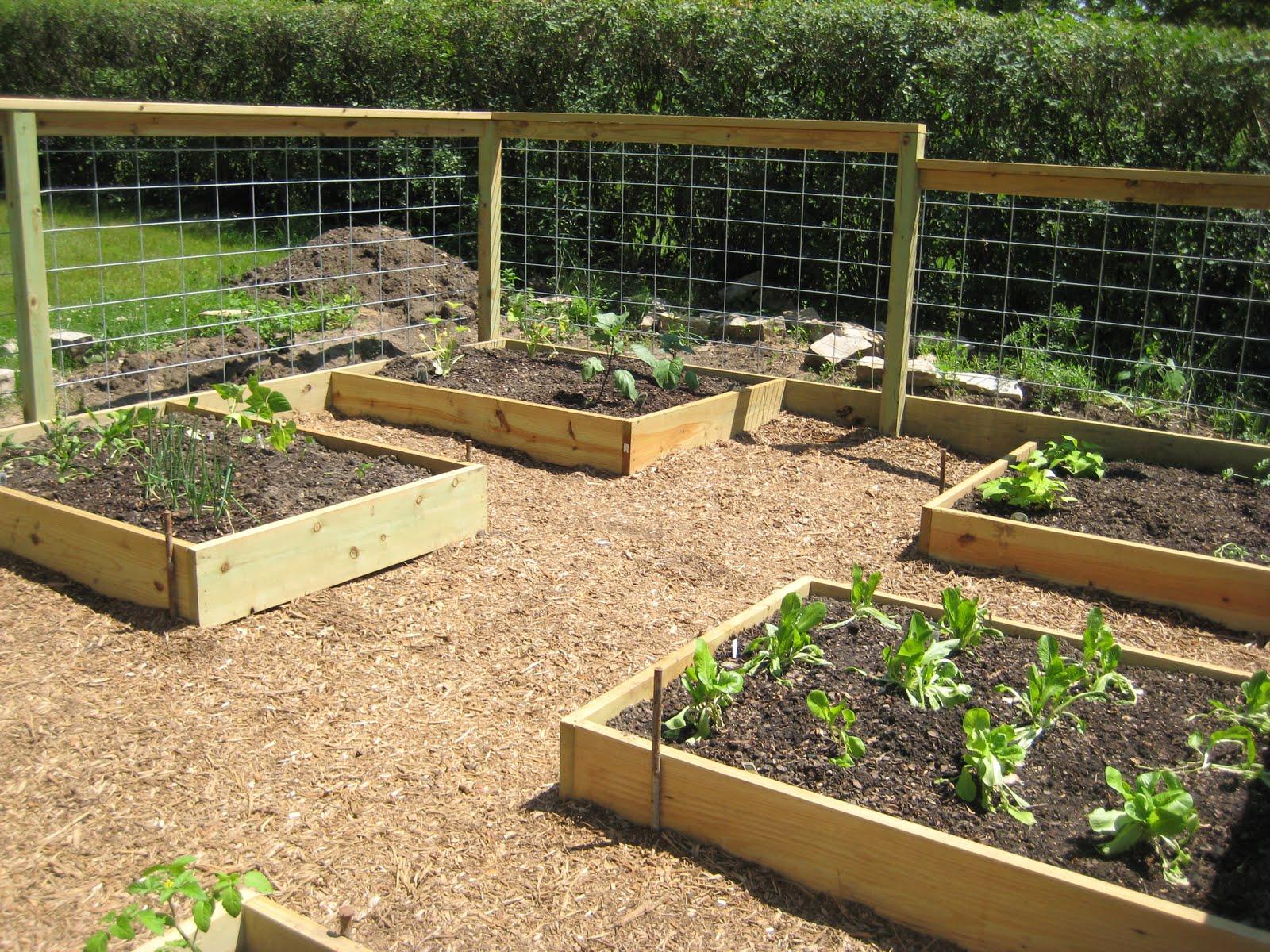 Gardens Raised: GlasderBuilding: Raised Bed Gardening: Beautiful And Organized