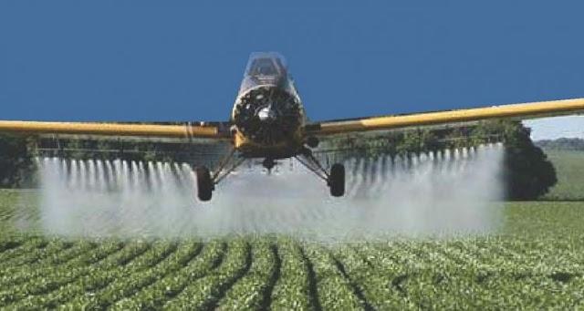 S.O.S. BEES: Encuentran rastros de pesticidas en el 75% de muestras de miel de todo el mundo.