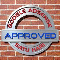 Daftar adsense diterima dalam waktu satu hari