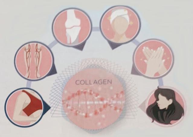 Khỏe trong đẹp ngoài cùng collagen