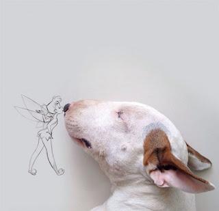 فنان وكلبه، عجائب الدنيا