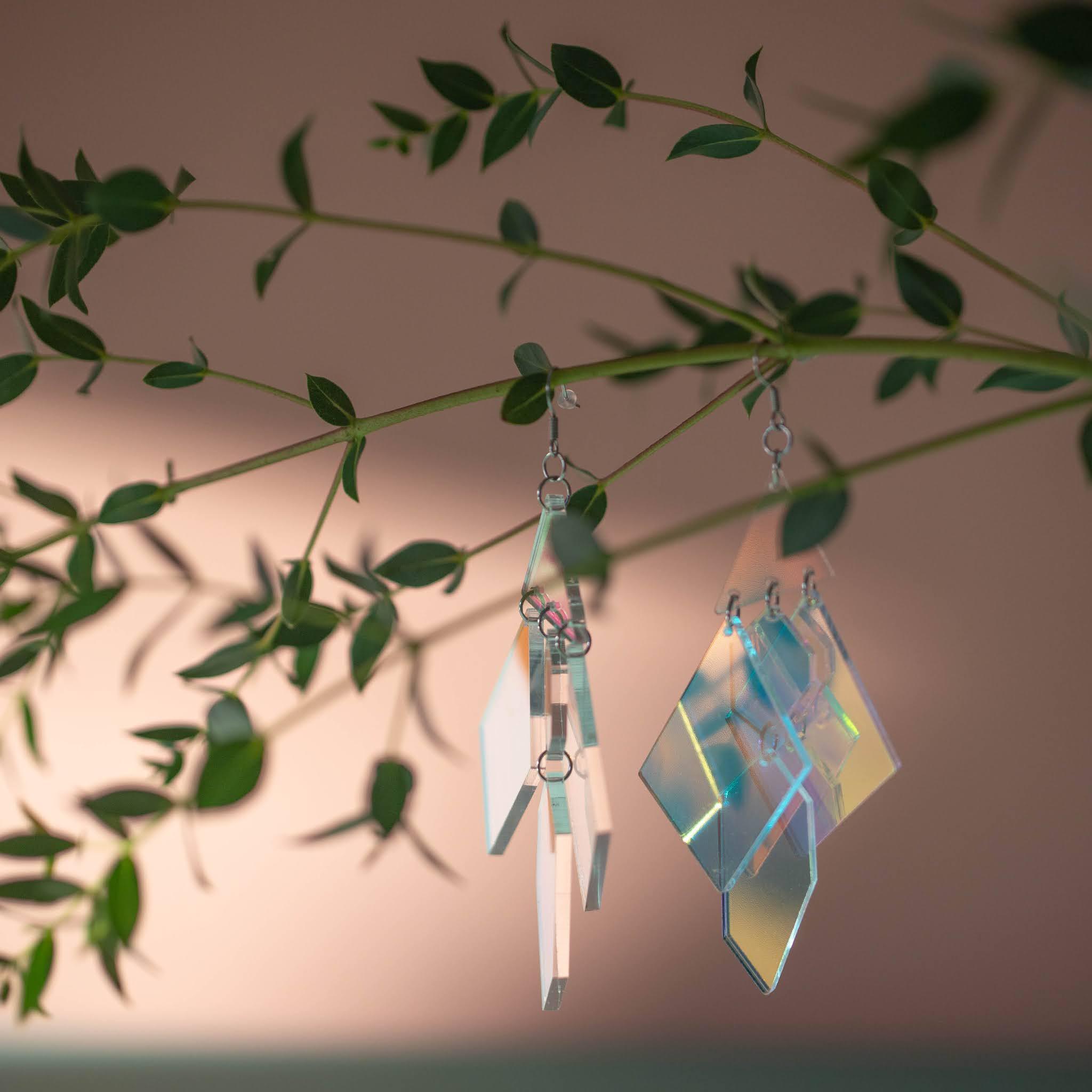 Muoviset, hologrammin lailla heijastelevat korvakorut roikkuvat pieni lehtisen eucalyptuksen oksalla.