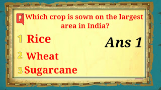 Which crop is sown on the largest area in India?