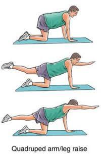 تناوب الذراع والساق