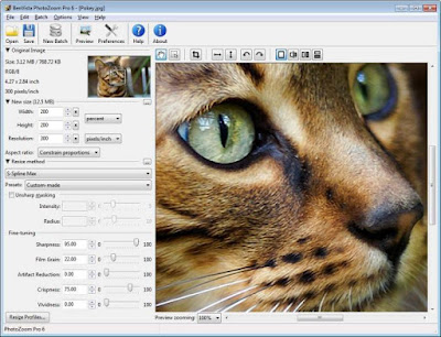 Full software with working keygen, BenVista PhotoZoom Pro version 6.0.8.