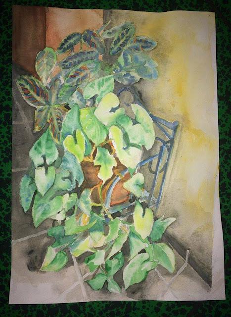 aquarelle de Karine Babel, plantes
