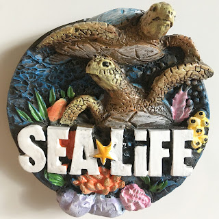Sea Life Centre magnet with turtles