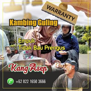 Jual Kambing Guling di Bandung | Paling Murah di kelasnya, jasa kambing guling di bandung, kambing guling bandung, kambing guling di bandung, kambing guling,