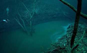 Inilah Penemuan Mengejutkan Dari Bawah Laut Yang Menkajubkan