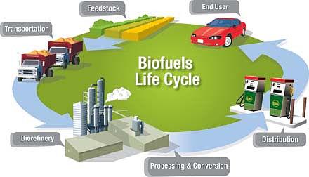 Ciclo de vida de los biocarburantes o biocombustibles