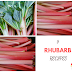 9 Rhubarb Recipes To Try Out This Spring...