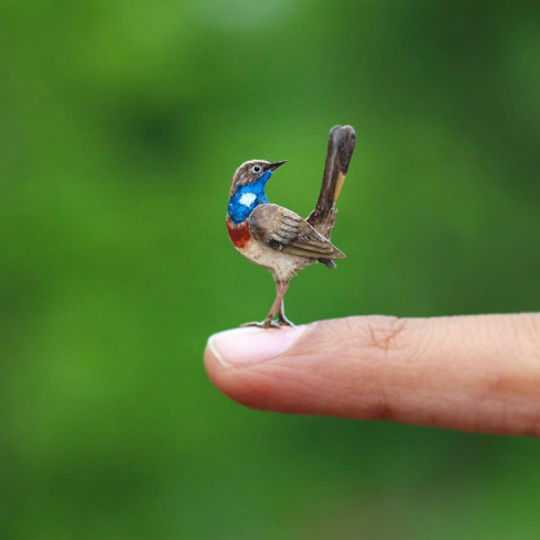 Bluethroat Bird Miniature Paper Art