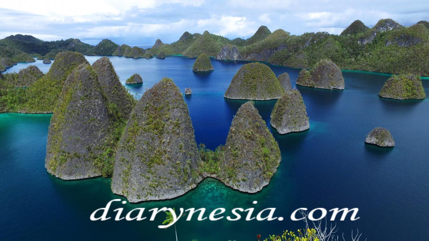 Wayag island raja ampat, raja ampat regency tourism, west papua tourism, diarynesia