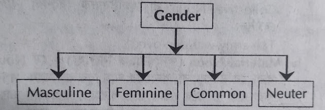 Gender list