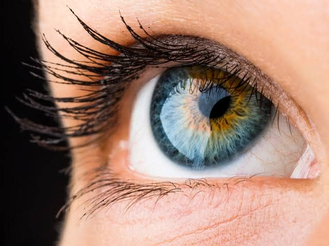 Eyelid Dermatitis Treatment Natural