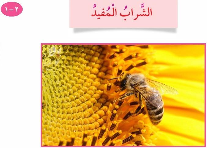 الصف الثالث - الشراب المفيد ـ الصف الثالث منهج الكويت