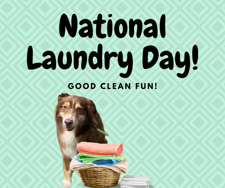 National Laundry Day Wishes For Facebook