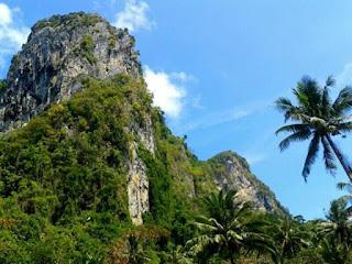 Foto van de natuur en een stuk oerwoud op Ko Mook Island