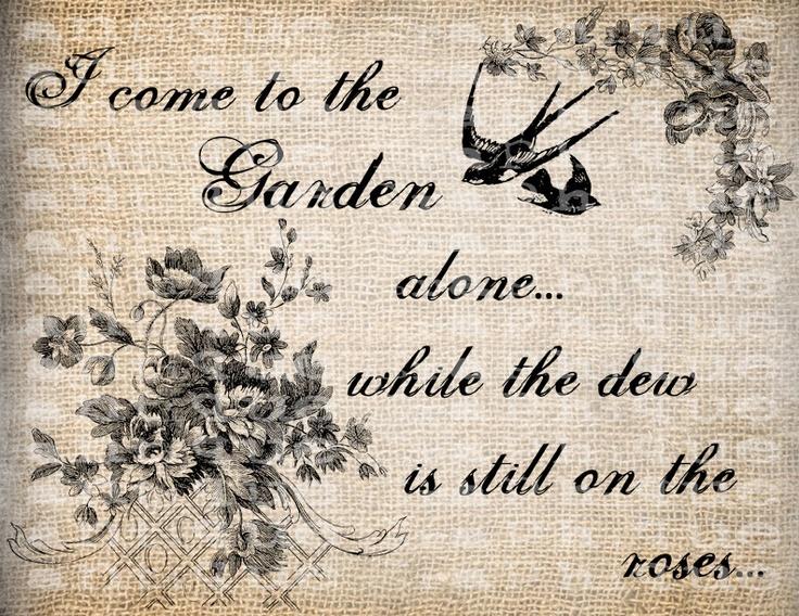 Simplicity In The Garden
