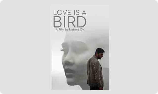 https://www.tujuweb.xyz/2019/05/download-film-love-is-bird-full-movie.html