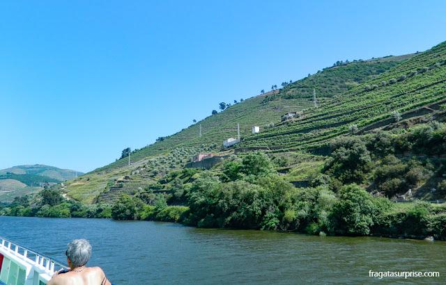 Paisagem do Vale do Rio Douro, Peso da Régua, Portugal