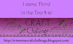 Top 3 at C.R.A.F.T Challenge