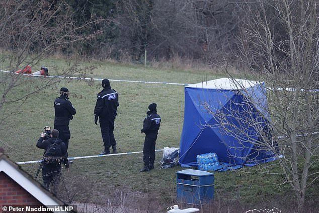 13yr old boy stabbed to death as a girl and four boys aged 13-14yrs arrested by the Police
