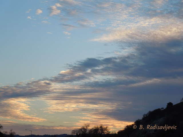 """Larry"" Moore Park in Paso Robles: A Photographic Review - Sunset"