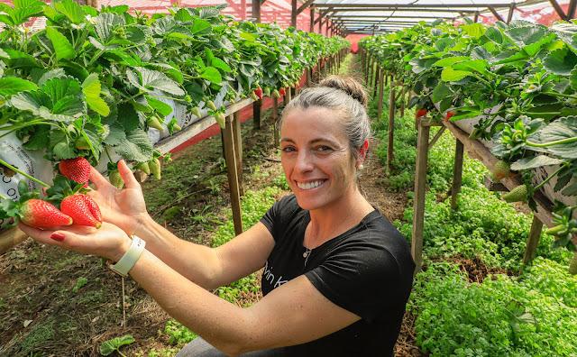 30ª Festa da Colônia mostra a força das Agroindústrias no interior de Gramado-RS