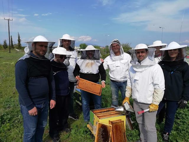 """Ι.Ε.Κ. Λάρισας: Έναρξη νέου τμήματος Α' Εξαμήνου, """"Τεχνικός Μελισσοκομίας"""" για τον Σεπτέμβριο 2019"""