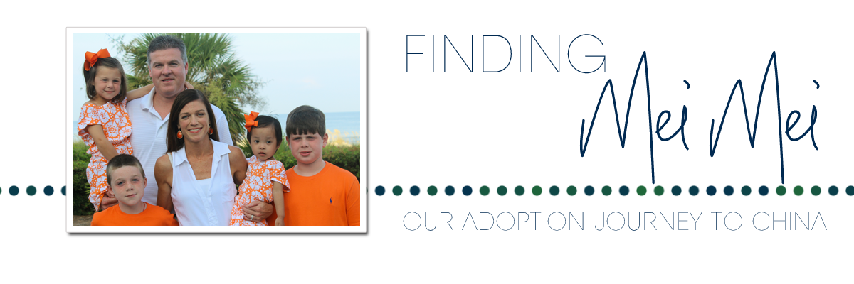 Finding Mei Mei:  Our Adoption Journey to China