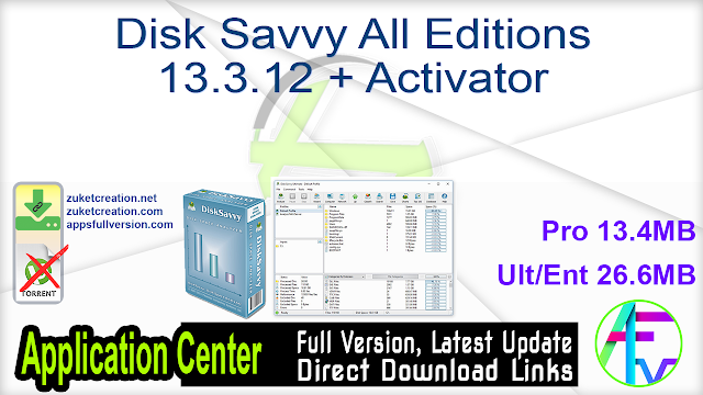 Disk Savvy All Editions 13.3.12 + Activator