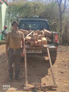 वन परीक्षेत्र अधिकारी की बड़ी कार्यवाही सागौन की लकड़ी जप्त