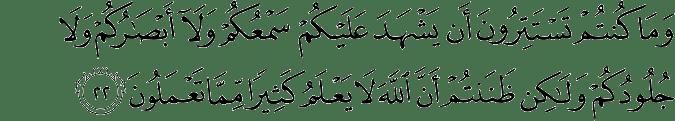 Surat Fushshilat ayat 22