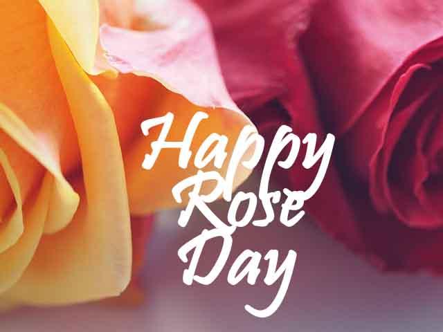 valentine rose day images