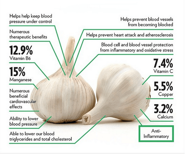 Proven health benefits of Garlic