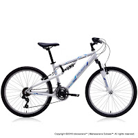 Sepeda Gunung Remaja Polygon Rapid 24 Inci