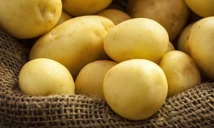 Mucugê e Ibicoara registram maiores valores de produção da batata-inglesa do Brasil