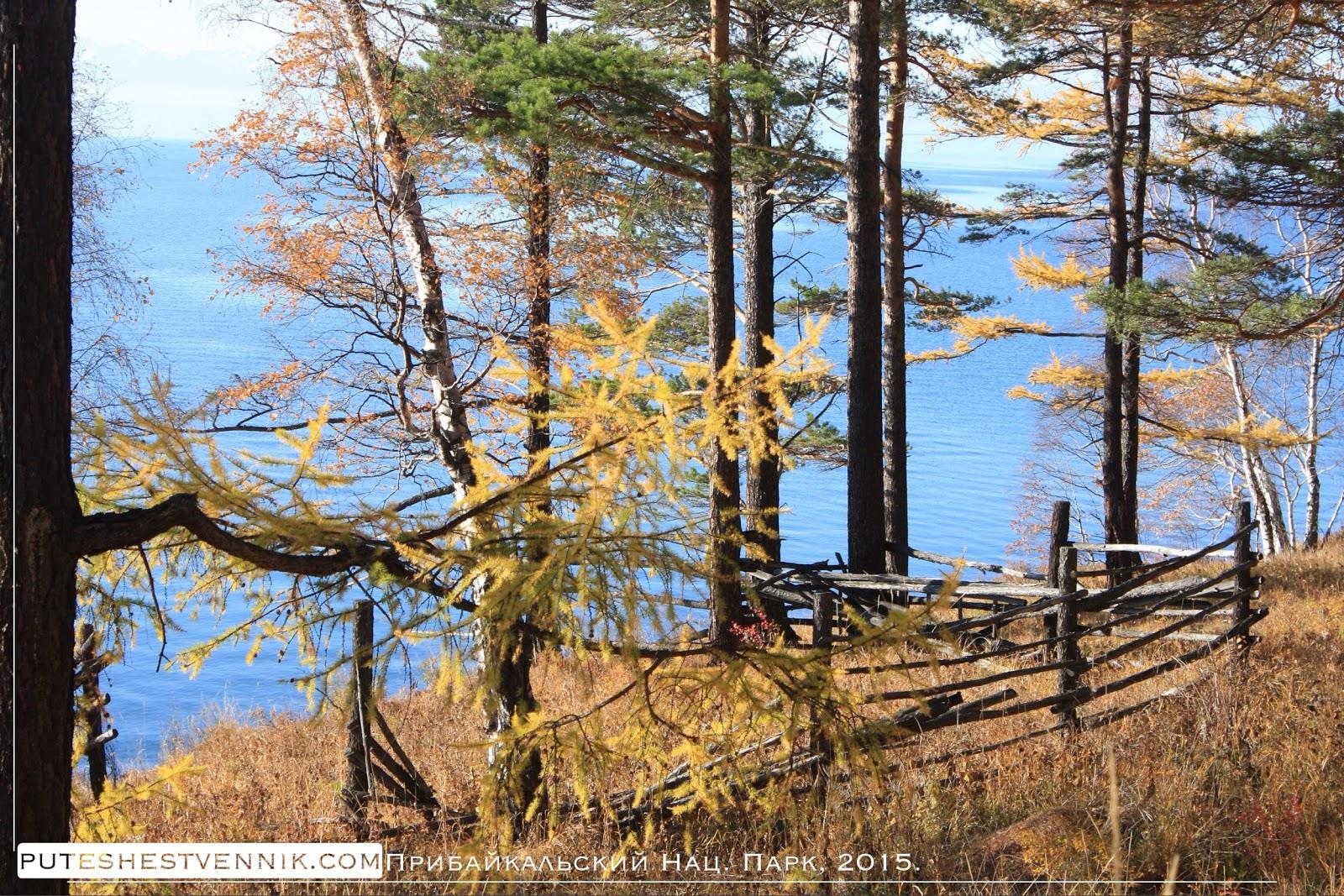 Деревянная ограда на берегу Байкала