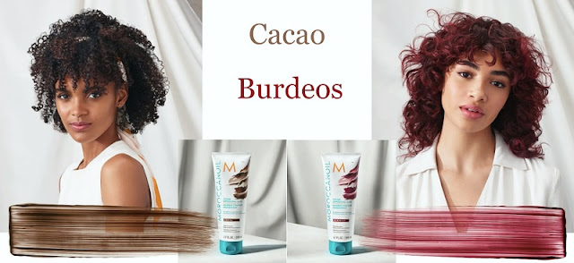 cacao-burdeos